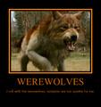 Twilight - demon_wolf photo