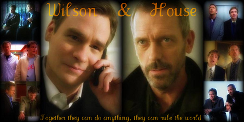 Wilson and House