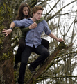 twilight - the-twilight-saga-eclipse photo