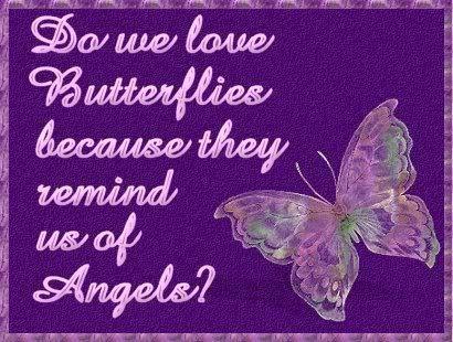 borboleta Verse !