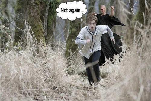 Edward / Voldemort funny!!!! :)