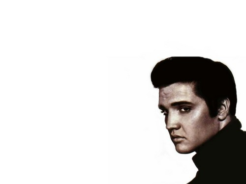 elvis presley fondo de pantalla called Elvis