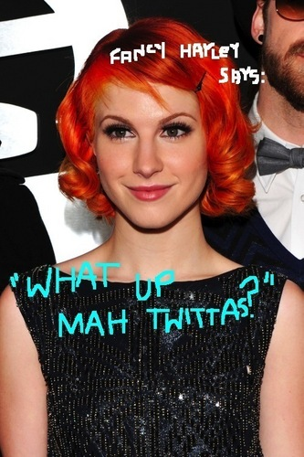Hayley's Twitter profil Picture