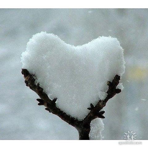 Heart.....