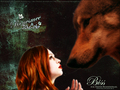 Jake and nessie wallpaper