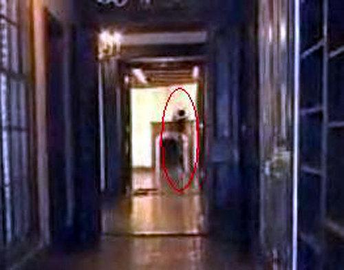 Michael jackson's ghost