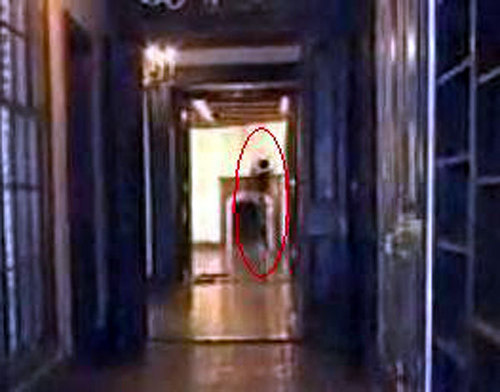 Michaels ghost