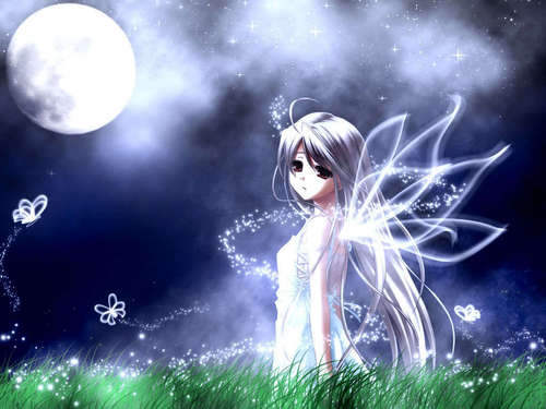 Fairies wallpaper entitled Butterfly  Fairy
