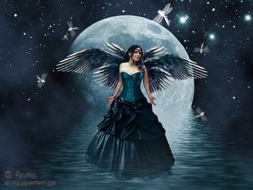 Fairies images Moon Fairy HD wallpaper and background photos