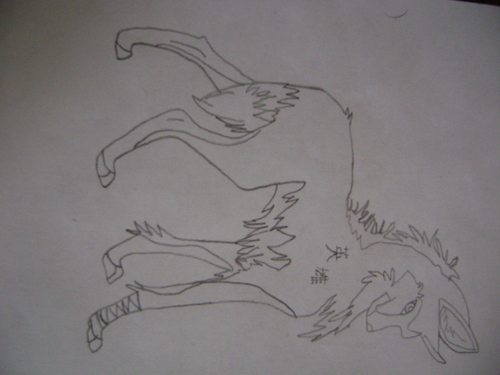 wolves wallpaper entitled my drawn wolves