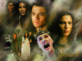 Richard and Kahlan - richard-and-kahlan wallpaper