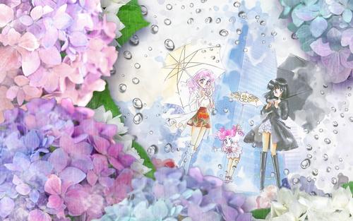 Sailor Moon Sailor Stars karatasi la kupamba ukuta called Sailor Stars