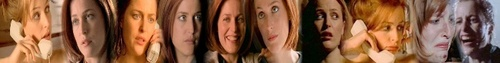 Scully Banner <3