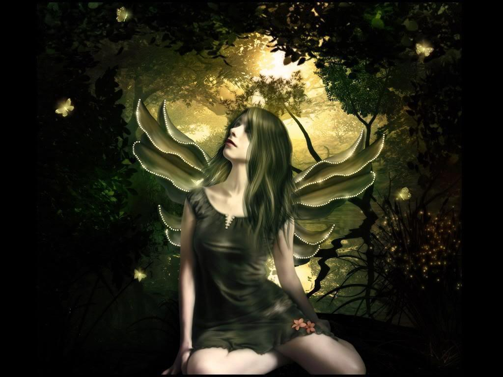 Shinning borboleta Fairy wallpaper