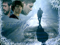 Winchester Men - the-winchesters wallpaper