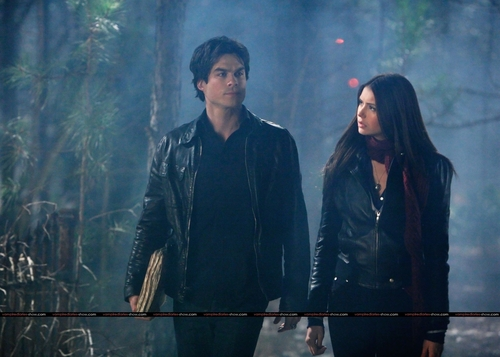 Damon & Elena kertas dinding titled damon and elena 1x14