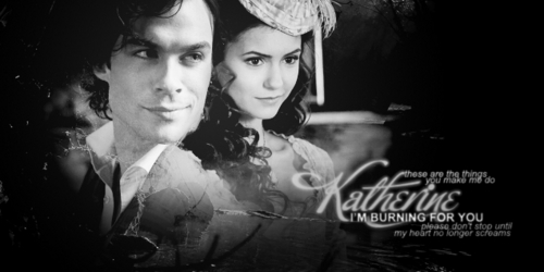 Damon and Katherine wallpaper called damon and katherine