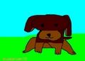 drawing of browndog.