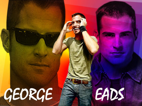 George Eads/Nick Stokes wallpaper entitled george eads wallpaper