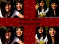 slena and demi wallpapers - selena-gomez-and-demi-lovato wallpaper
