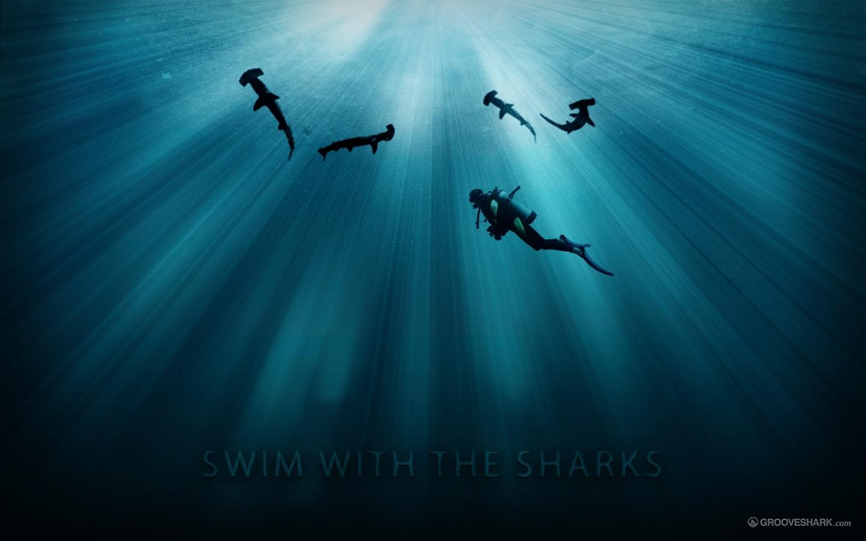 Cool Hammerhead Shark Wallpaper