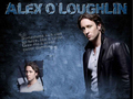 Alex Wallpaper - alex-oloughlin wallpaper