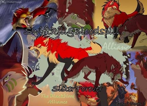 Bloodspill & Swiftkill wolpeyper