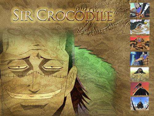 One Piece wallpaper entitled Crocodile