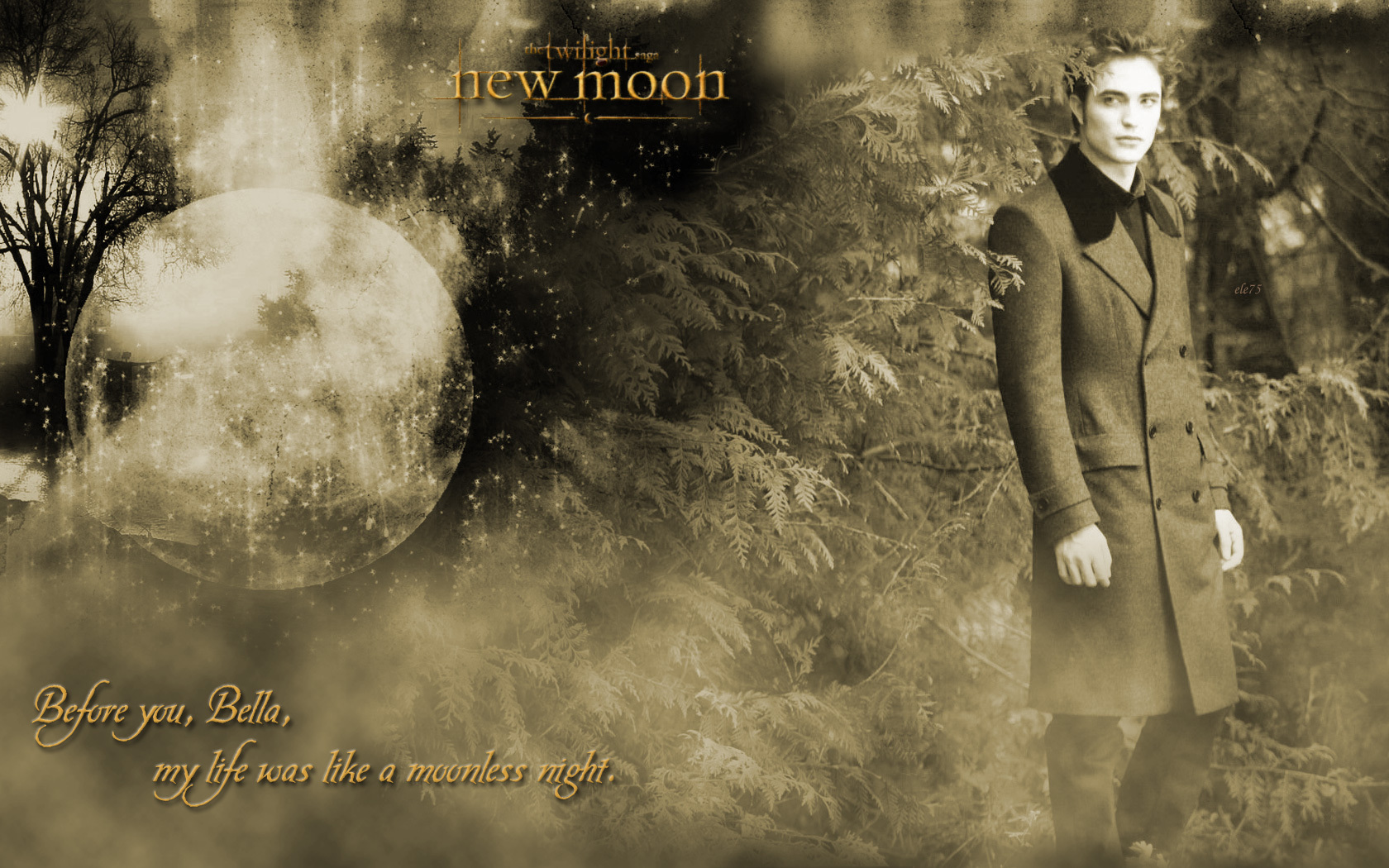 Edward New Moon Twilight Series Wallpaper 10304695