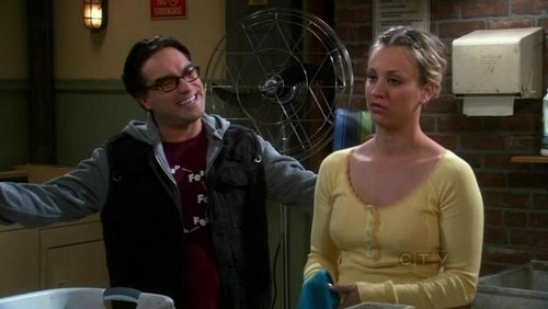 The Big Bang Theory Friendships wallpaper entitled In The Laundry Room