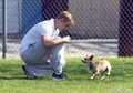 Kellan at the park with his dogs - twilight-series photo