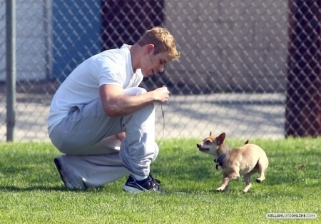 Kellan at the park with his chiens
