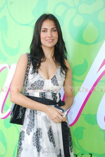 Lara Dutta at Araish Exhibition