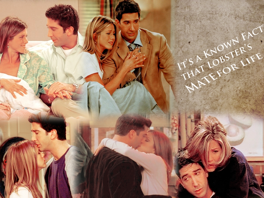 Lobsters mate for life wall  - friends wallpaper