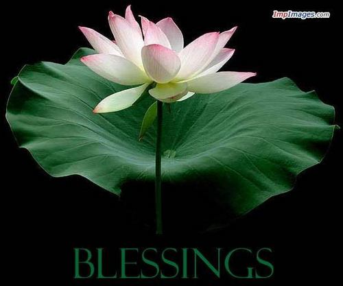 May anda all be Blessed today :)