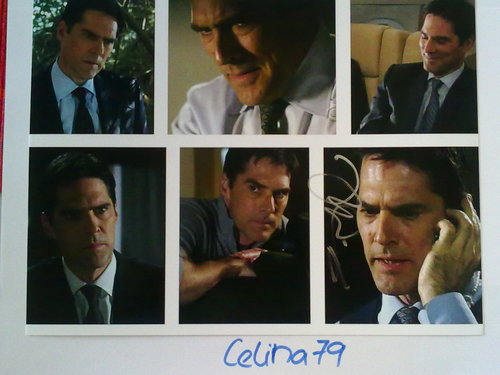 SSA Aaron Hotchner wallpaper entitled Original Autographed Picture of Thomas Gibson