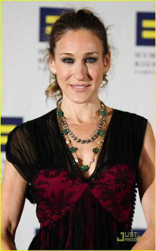 SJP @ 2010 Greater New York Human Rights Campaign Gala