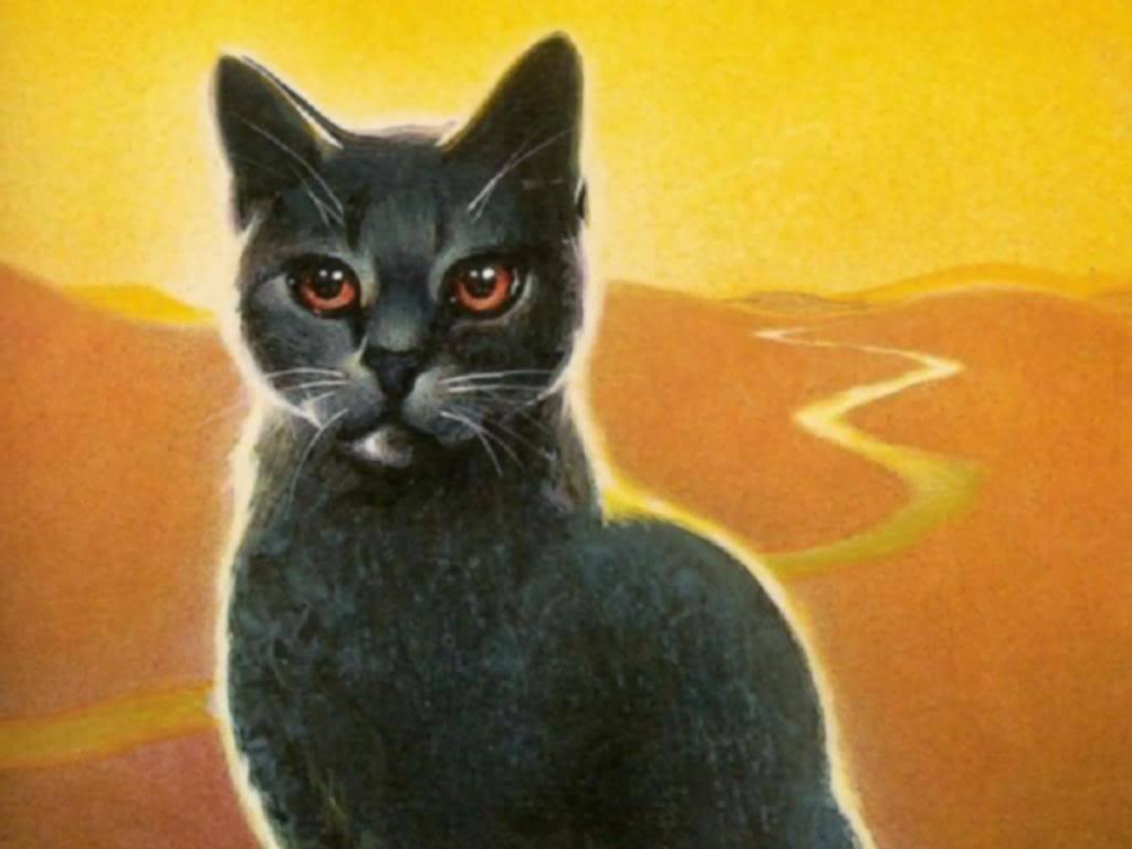 Stormfur , Warrior cats of the clans Wallpaper (10342124