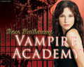 Vampire Academy door Richelle Mead