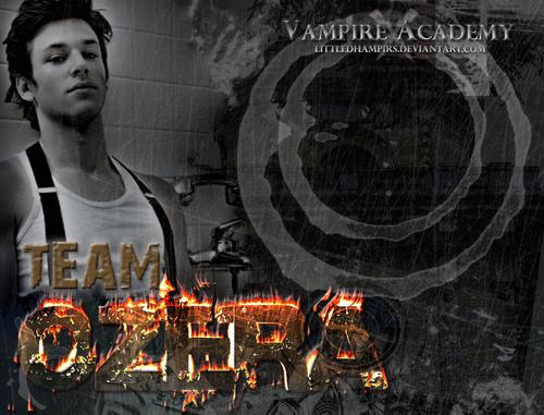 Vire academy vasilisa dragomir and christian ozera vire academy