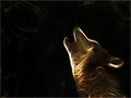 ~ Wolves  ~ - wolves wallpaper
