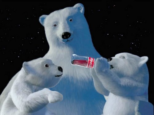 aww..drinking coke - polar-bears Photo