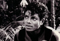 mike :b - michael-jackson photo