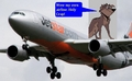 star and his airline better - balto fan art