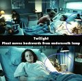 10  Mistakes In The Twilight Movie - twilight-series photo
