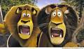 Alex and Zuba - alex-the-lion screencap