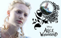 Alice in Wonderland Wallpaper - Down the Rabbit Hole - alice-in-wonderland-2010 wallpaper