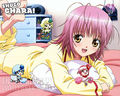 Amu and Amu's Shugo chara
