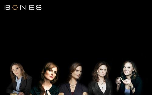 Temperance Brennan پیپر وال titled Bones پیپر وال
