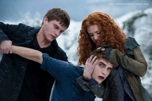 Edward,Victoria,and riley fighting